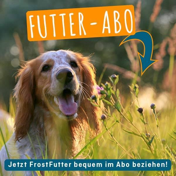 FrostFutter.de - NEU: Tiefkühlfutter jetzt einfach und bequem im Abo bestellen!