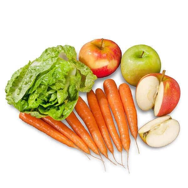 FrostFutter BARF Gemüsemix für Hunde