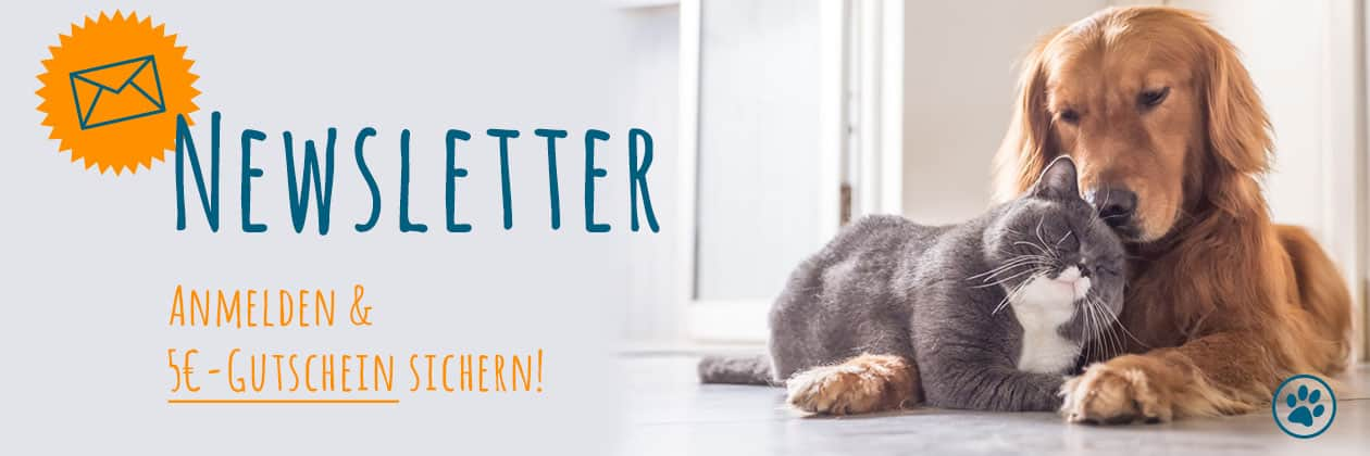 FrostFutter Newsletter: BARF Frostfleisch für Hunde und Katzen