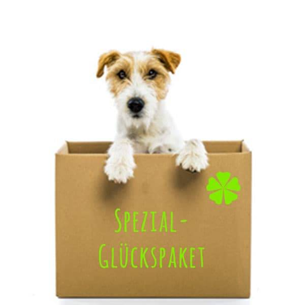 BARF Spezial Glückspaket für Hunde - Bunter Mix an bestem FrostFutter