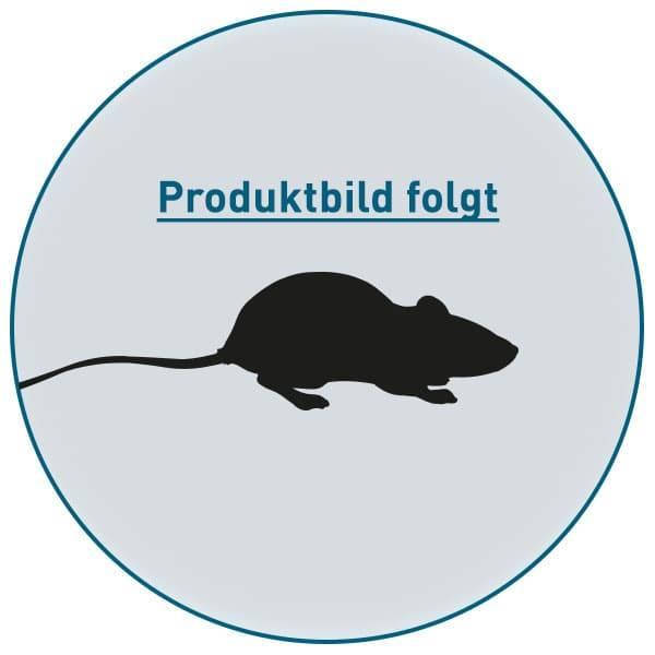 FrostFutter.de - Gefrorene Futtertiere für Reptilien: Maus XXL ca. 10 cm